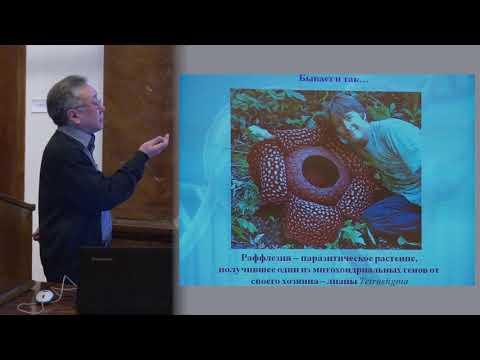 , title : 'Ким А. И. - Генетика - Целенаправленное изменение организмов. Генетический анализ