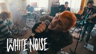 Picture of a band or musician: The White Noise
