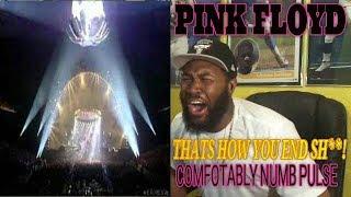 Download Pink Floyd Comfortably Numb MP3 Video Free Descarga