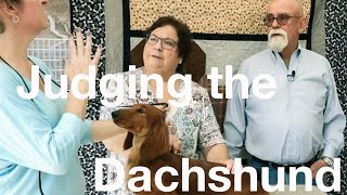 Judging the Dachshund with Pam & Dave Peat