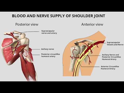 Cosa unguenti di striscio dolori articolari