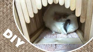 FUN Guinea Pigs Toy DIY Popsicle Tunnel For Playtime! ♡ Guinea Pigs JIJI & KIKI