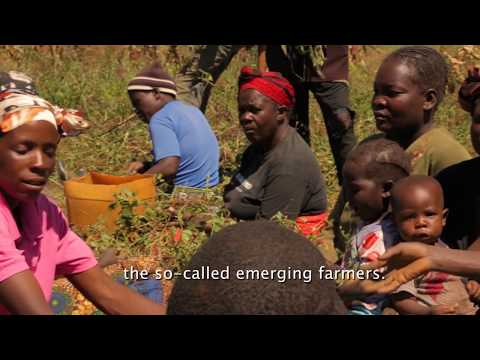 Building Climate Resilient Agriculture in Zambia
