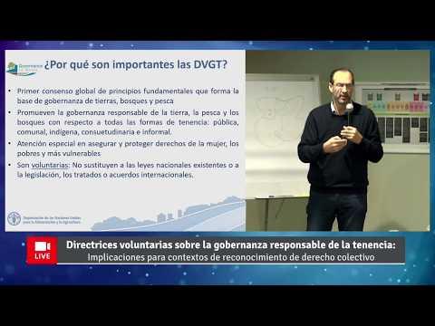 Video presentación: Directrices voluntarias sobre la gobernanza responsable de la tenencia, por Héctor Cisneros y Safia Aggarwal de la FAO.