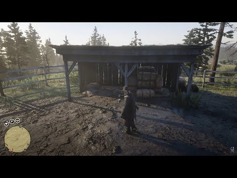 Red Dead Redemption 2 Online Metal Detector Collector Rank 5 - RDO Metalldetektor Sammler Rang 5