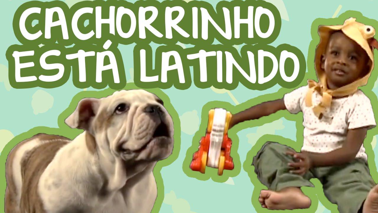 CACHORRINHO ESTÁ LATINDO | BEBÊ MAIS CANTIGAS (PART. ESPECIAL DO NANDO REIS)