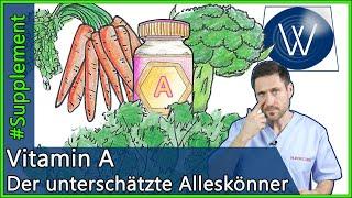 Vitamin A: Die Rolle von ß-Carotin für unsere Gesundheit & für wen eine Überdosierung gefährlich ist