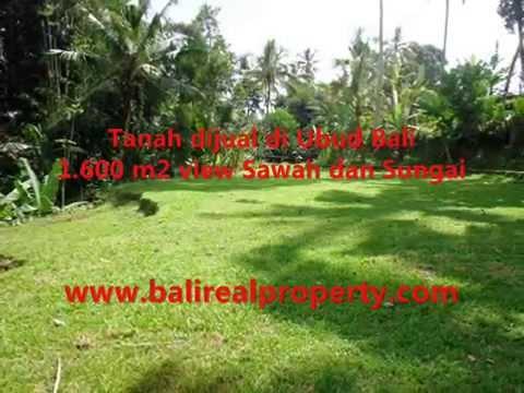 1.600 m2 Lahan  View sawah dan sungai di Sentral Ubud TJUB416