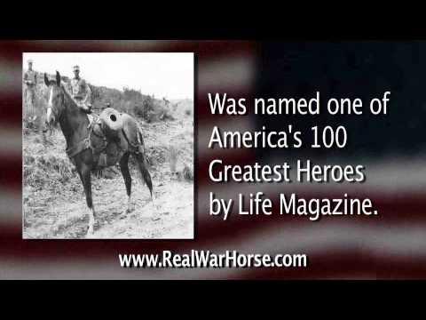 Fort Ord Veterans Day Event Celebrates War Horses