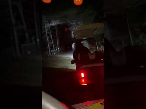 Video Of Holly Acres Campground, NJ