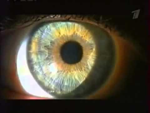 Очки минусовые это дальнозоркость