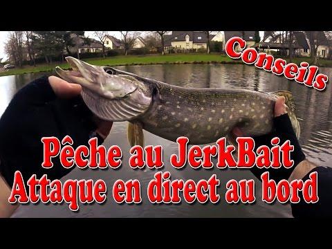 Leurre poisson nageur Big Bait jerkbait ESOX JERK KILLER 15cm 75g BKK pêche pike