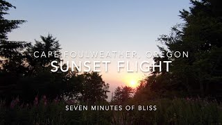 Seven Minutes of Bliss, DJI FPV - Cape Foulweather, Oregon