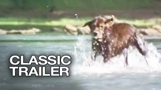 Fluke Official Trailer #1   Samuel L. Jackson Movie (1995) HD