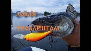 Рыбалка волга тверская область