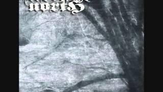 Arcane North - Ravenous and Cavernous