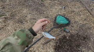 Рыбалка в Беларуси весной на  реке Свислочь