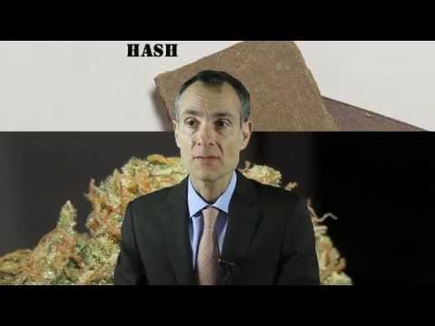 Media - Hash And Marijuana