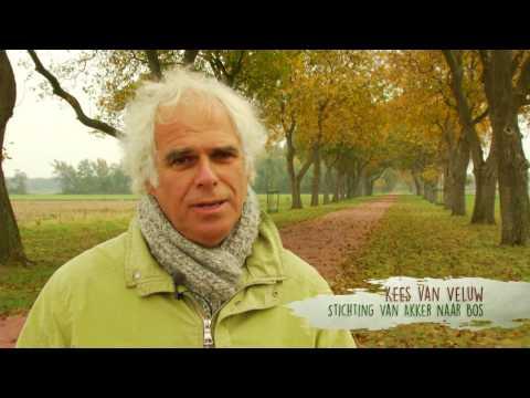 Minidocumentaire voedselbossen en natuurlijke landbouw