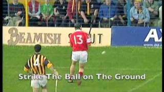 Hurling   The Fastest Game On Grass