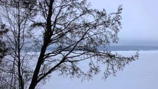 Музыка из диалога о рыбалке
