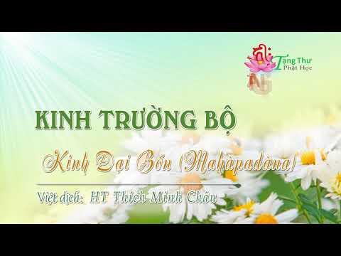 14. Kinh Ðại bổn (Mahàpadàna sutta)