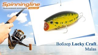 Воблер lucky craft malas 0019 696 lime chart