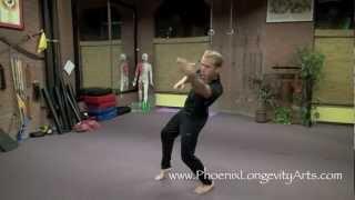 Kung Fu Cripple, Drunken Boxing Lesson 1