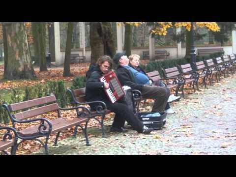 Koksartroza 3 etapy udowej, do której grupy niepełnosprawności