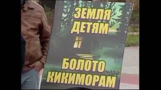 В Гатчине состоялся митинг многодетных матерей