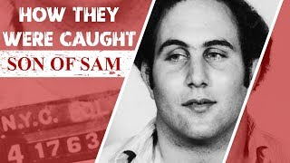 How They Were Caught: Son of Sam