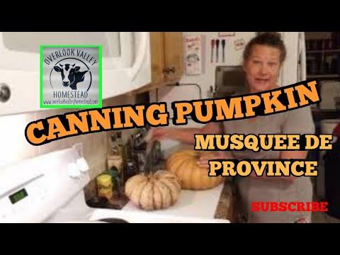 , title : 'CANNING PUMPKIN, MUSQUEE DE PROVINCE