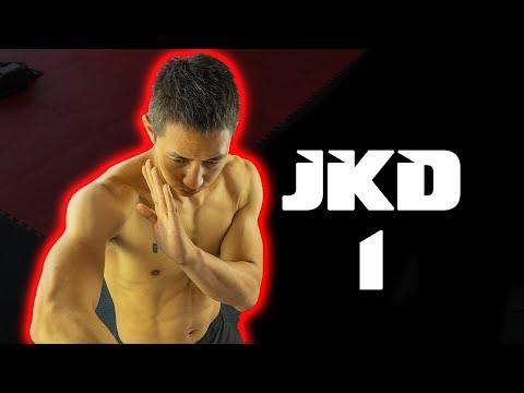 Jeet Kune Do Beginners to Advanced 1 @SakanLam Martial Arts ...