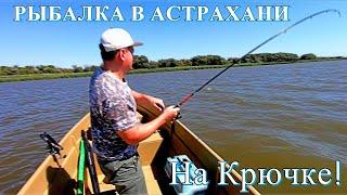 На крючке рыболовная база астрахань
