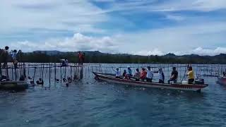 Duyung Bunaken