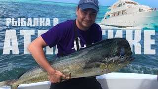 Рыбалка на острова индийского океана материкового происхождения