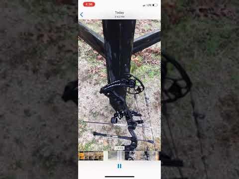 2019 Mathews Vertix Bow Torque Test - смотреть онлайн на Hah