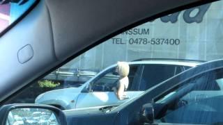 Блондинка в пробке :)