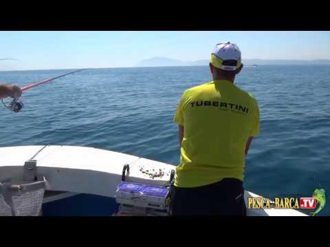 La posizione di testa per pescare su una trota