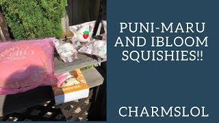 Puni Maru Yummiibear Head Bun, Mini Mr. White Polar Bears, iBloom Cheesecake Squishies! | CharmsLOL