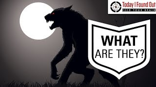 Where Did the Idea of Werewolves Come From?