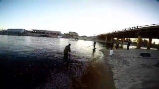 Рыбалка на сбросе ГРЭС