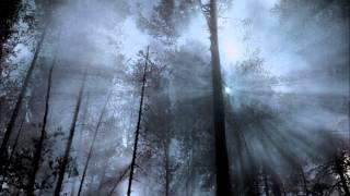 Elysion - Erase Me (with lyrics)
