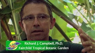Dr. Richard Campbell and Noris Ledesma Interview