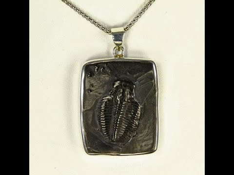 Trilobite set in Sterling Silver