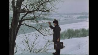 Зеркало / Николай Губенко - По несчастью или к счастью