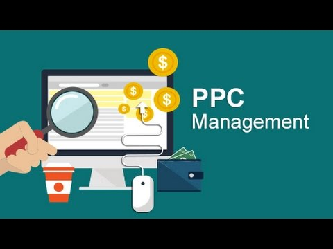 Benefits of Using Professional PPC Management Company