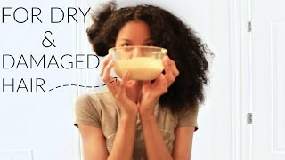 DIY Homemade Deep Conditioner For Damage And Dry Natural Hair|Shawntas Way