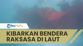 Detik-detik Komunitas Penyelam di Maumere NTT, Kibarkan Bendera Merah Putih Raksasa di Dalam Air