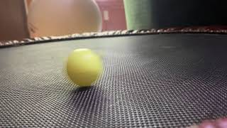 dreidel spin & flip